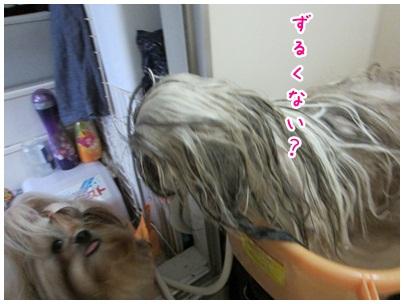 2012-09-03-08.jpg