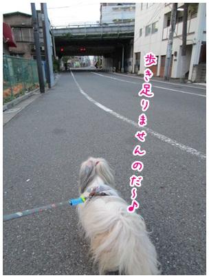 2012-09-04-02.jpg