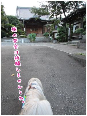 2012-09-04-04.jpg