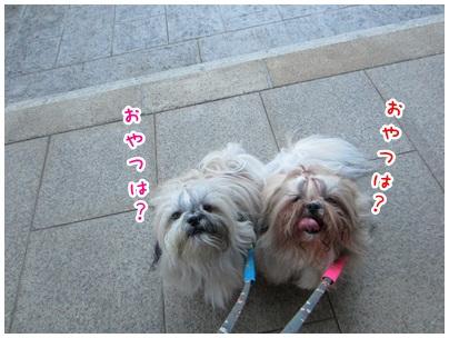 2012-09-04-07.jpg