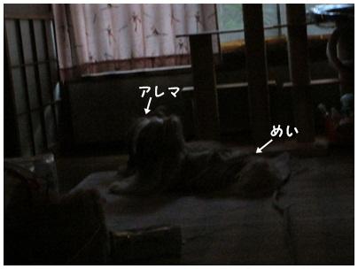 2012-09-07-02.jpg