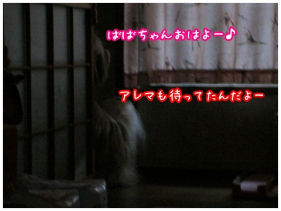 2012-09-07-04.jpg