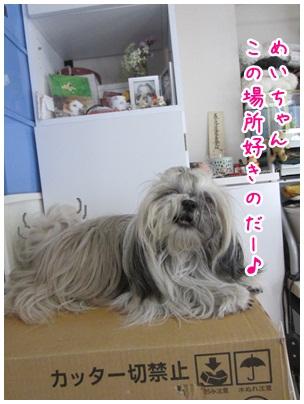 2012-09-09-03.jpg
