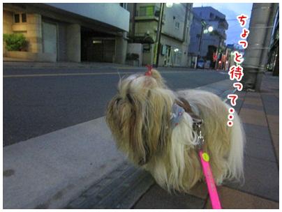 2012-09-15-01.jpg