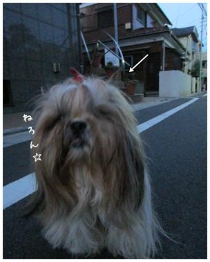 2012-09-15-04.jpg