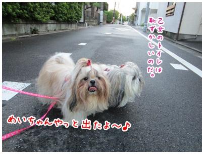 2012-09-17-05.jpg