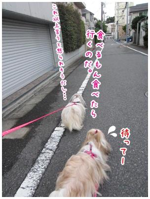 2012-09-18-04.jpg