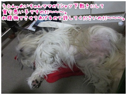 2012-09-19-01.jpg