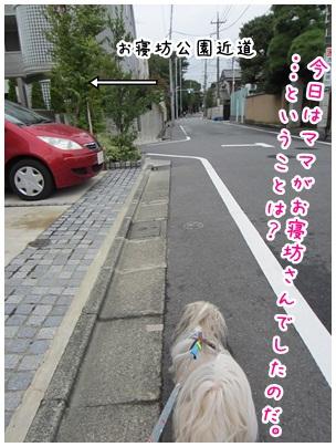 2012-09-25-01.jpg