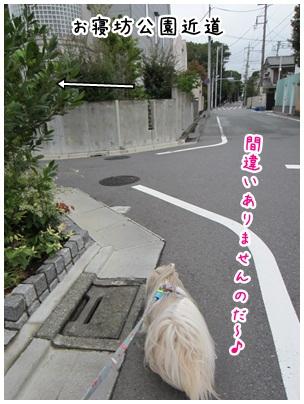 2012-09-25-02.jpg