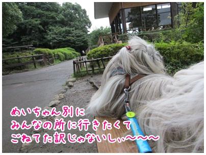 2012-09-25-11.jpg