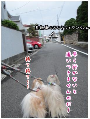 2012-09-27-03.jpg