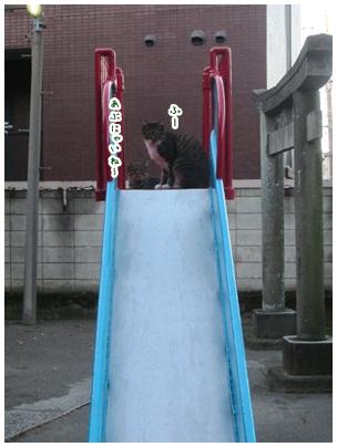 2012-10-03-05.jpg