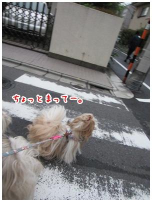2012-10-05-03.jpg