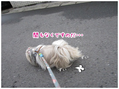 2012-10-06-01.jpg