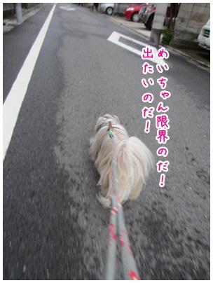 2012-10-06-06.jpg