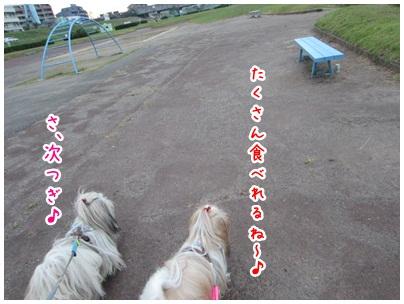 2012-10-19-07.jpg