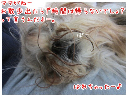 2012-10-23-02.jpg
