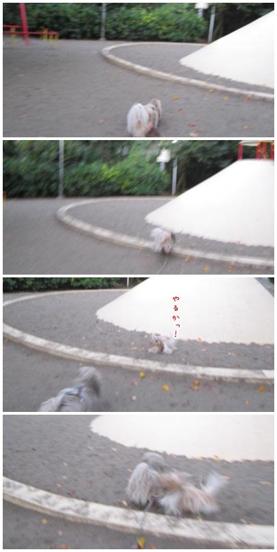 2012-11-04-03.jpg