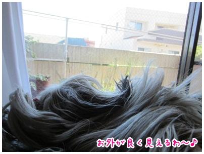 2012-11-05-01.jpg