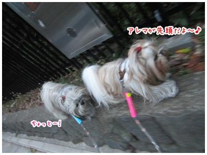 2012-11-08-02.jpg