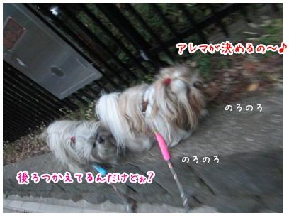 2012-11-08-03.jpg