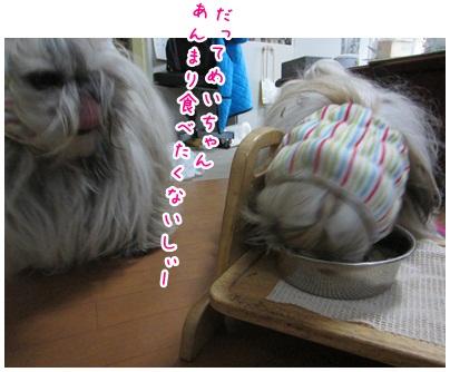 2012-11-16-01.jpg
