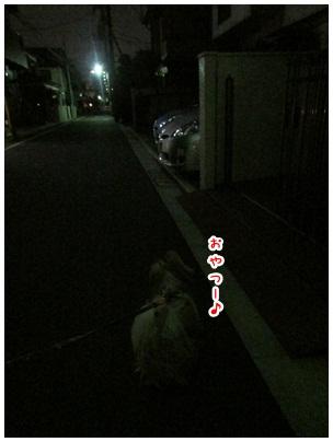 2012-11-20-02.jpg