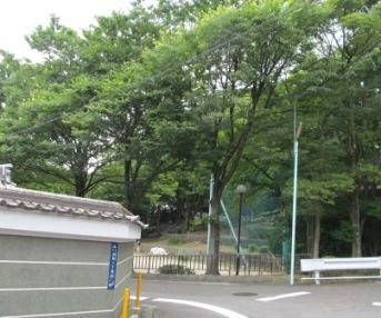片山神社の森と公園