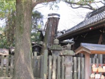 片山神社伐られた杉