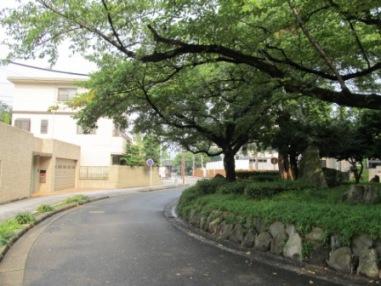胞衣塚から工事現場と徳川園正門を望む