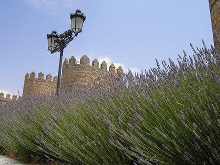 2007 ESPANA (200)
