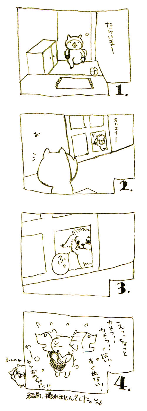 shiro_kuti.jpg