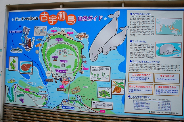 DSC06651.jpg