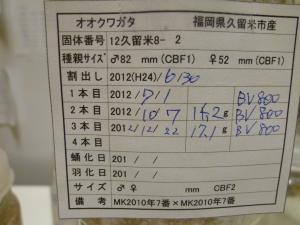 12久留米8-2管理カード