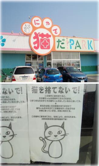 katsuura8.jpg
