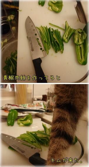 chinjyao1.jpg