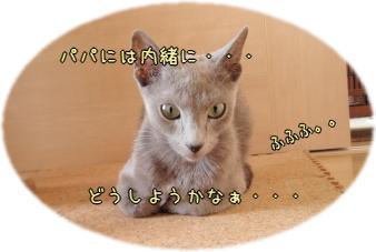 kizuisu2.jpg