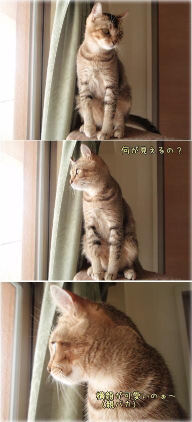 kimuyokogao.jpg