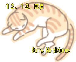 tamagawa10.jpg