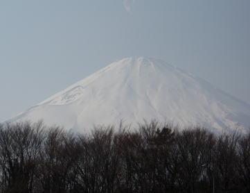 ashigara1.jpg