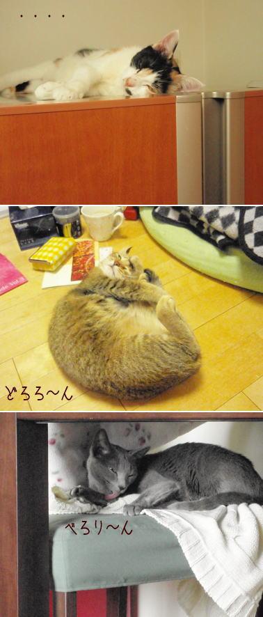 kimochiwaruishashin.jpg