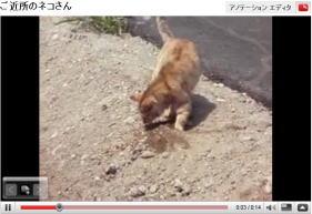 yuichi5.jpg