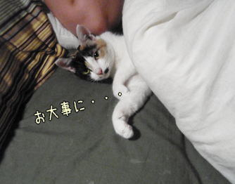 kazufuton.jpg
