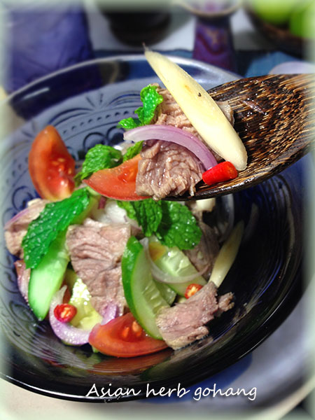 IMG_3723牛肉のヤム試食450縦