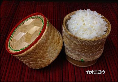 IMG_2534カオニヨウ四kお