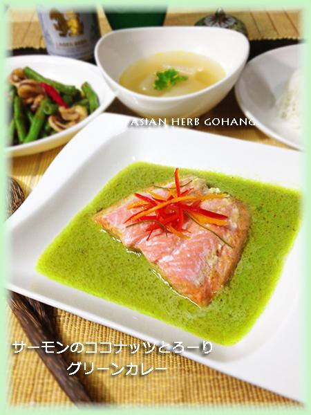 IMG_6609サーモンカレー縦450縁黄緑
