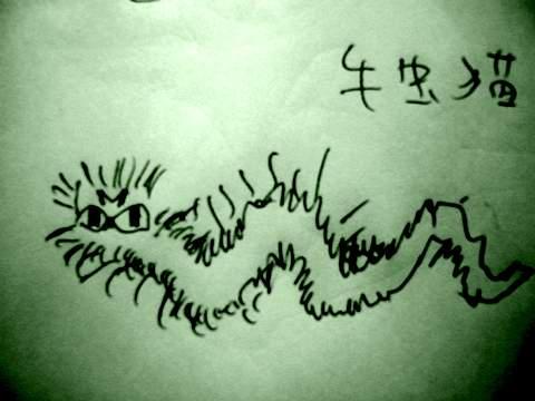 毛虫猫480