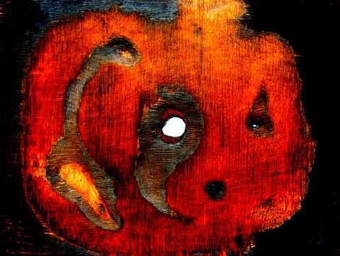 かぼちゃ?480