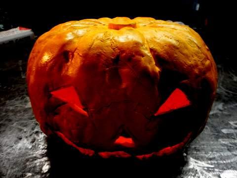 おばけかぼちゃ480